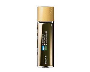Sony nw-e013f mp3 walkman