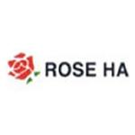 Rose Mirror HA for Windows Server 双机容错与集群/Rose