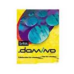 LOTUS Domino (1Domino Server+1Designer+9Notes Client) 办公软件/LOTUS