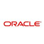 ORACLE oracle 10g/11g 标准版 5用户