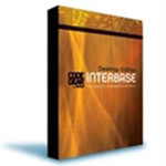 Borland InterBase 7 Client Access 20 user 操作系统/Borland