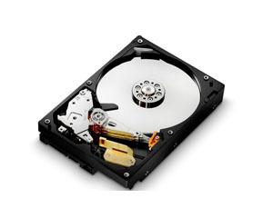 日立320GB 8MB 5K1000(HCS5C1032CLA382)图片