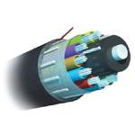AMP 室外用万兆绝缘型光缆8-1664194-5 光纤线缆/AMP
