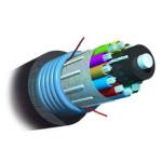 AMP 室外用万兆铠装型光缆8-1664179-5 光纤线缆/AMP