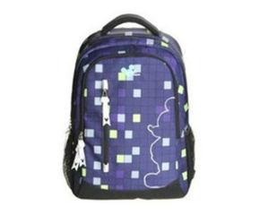 迪士尼DNC1108186 15.6英寸双肩休闲电脑包(紫)