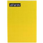 BIWIN Pro C5301 64GB 固态硬盘/BIWIN