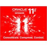 ORACLE 11G 标准版 [25用户] 数据库和中间件/ORACLE