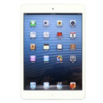 iPad Mini(16GB/WIFI版)