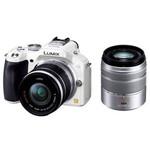 松下G5双头套机(14-42mm,45-150mm) 数码相机/松下