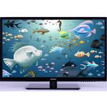 熊猫LE32D31S 平板电视/熊猫