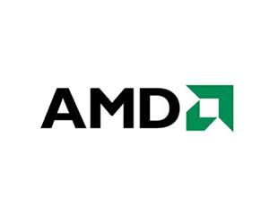AMD FX-6100(散)图片