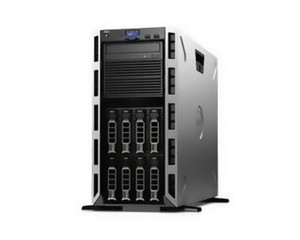 戴尔PowerEdge T430(E5-2630V3/8G/1TB)图片