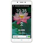 中兴DM(8GB/电信4G) 手机/中兴