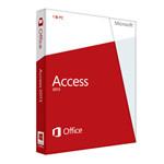 微软Access 2013