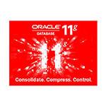 ORACLE 11g(企业版 1CPU) 数据库和中间件/ORACLE