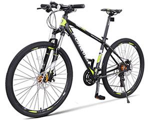 永久30速智能自行车(R100)图片