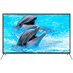 志高3232 49英寸普通电视版 液晶电视/志高