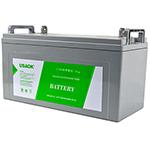 山特120AH/12V 蓄电池/山特