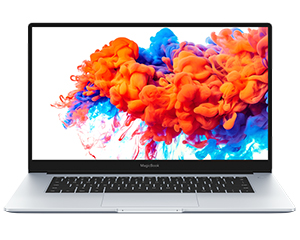 荣耀MagicBook 14(i5 10210U/8GB/512GB/MX250)