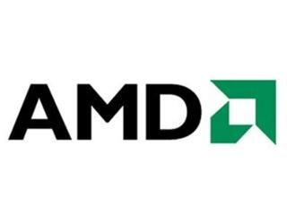 AMD Ryzen 5 5500U图片