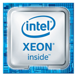 Intel Xeon W-10855M 服务器cpu/Intel