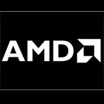 AMD Ryzen 3 5300U CPU/AMD