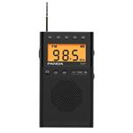 熊猫6107 收音机/熊猫